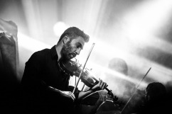 violinist-407185_960_720